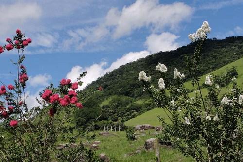 Paisagem do Sana. Macaé/RJ - Data: 08/01/2013 Foto: Erica Ferreira